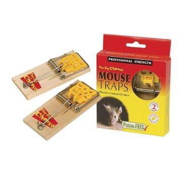 Ποντικοπαγιδες 100